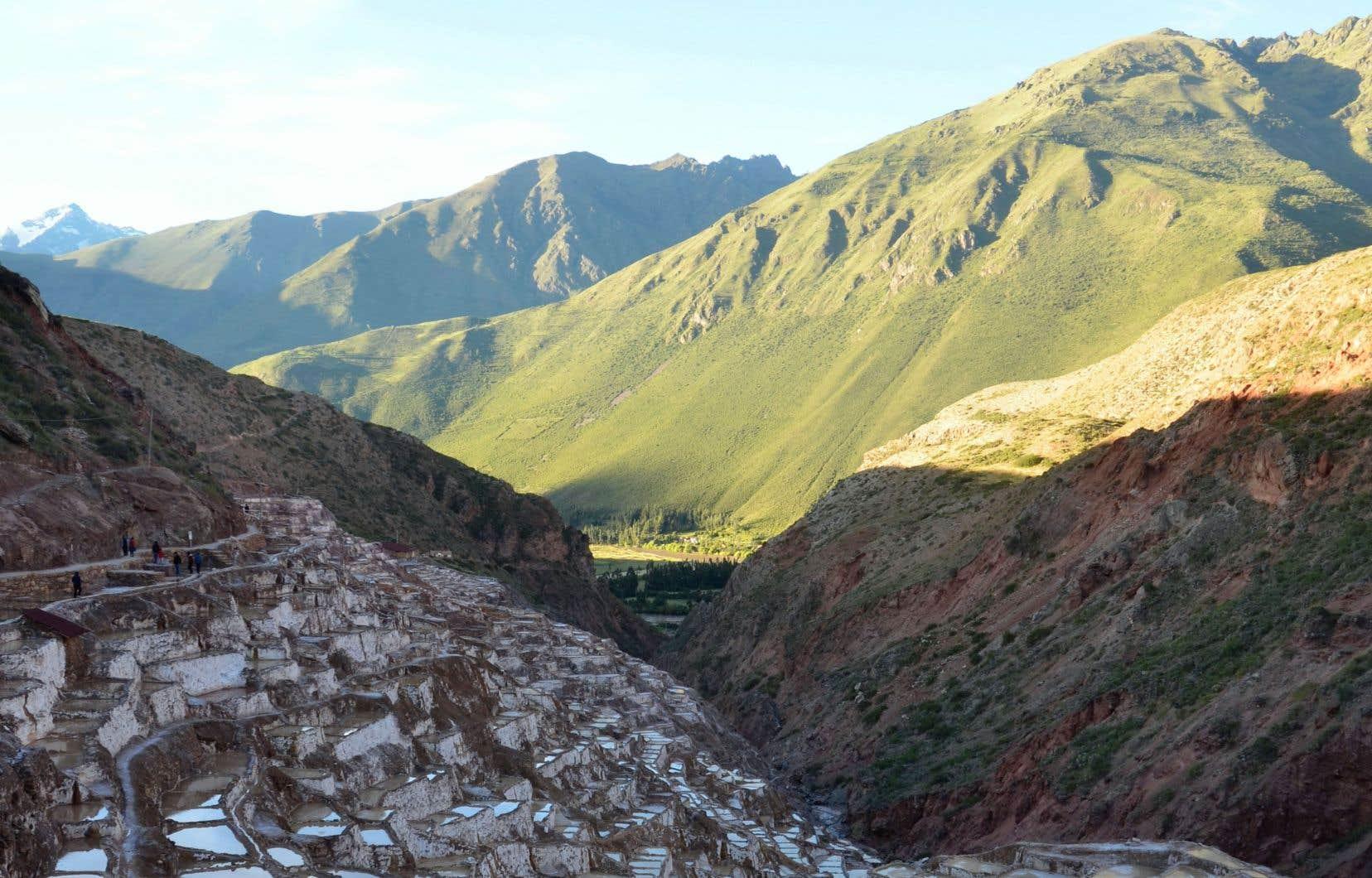 Autre site fascinant dans la Vallée sacrée, les Salines de Maras qui fournissent depuis 4000ans le sel indispensable à la conservation des aliments, puisé dans une myriade de lagunes.