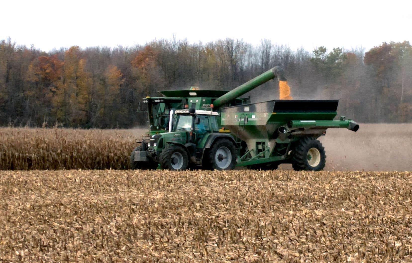 Jusqu'à maintenant, la croyance voulait que les semences enrobées de néonicotinoïdes améliorent les rendements agricoles, justifiant ainsi leur utilisation, tant pour les producteurs que pour les gouvernements.