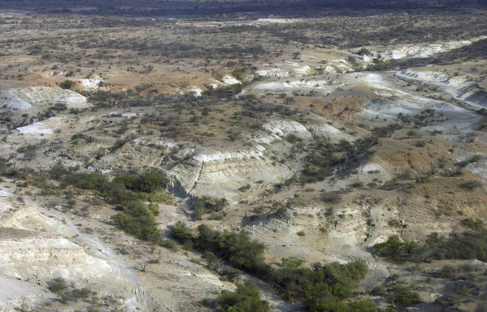 Le bassin d'Olorgesailie