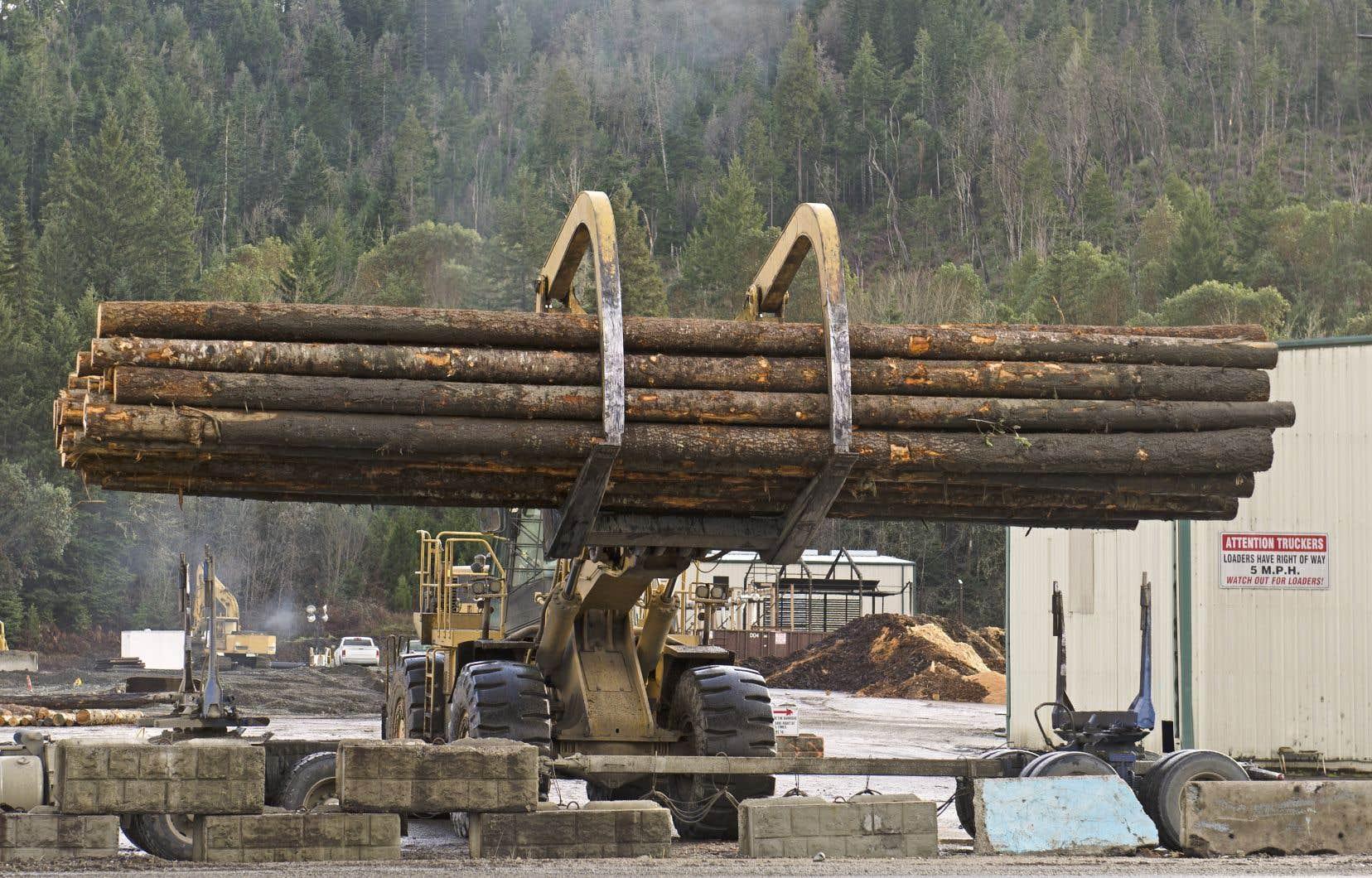 En juillet dernier, la Commission des valeurs mobilières de l'Ontario concluait que la forestière et plusieurs de ses hauts dirigeants avaient fraudé les investisseurs et trompé les enquêteurs.
