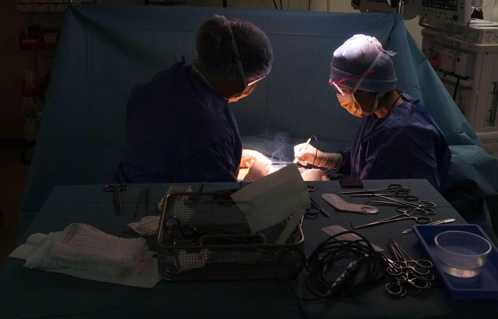 Avec l'augmentation progressive de leur rémunération depuis dix ans, les médecins spécialistes font maintenant partie du 1% les mieux payés au pays, systèmes public et privé confondus, note l'auteur.