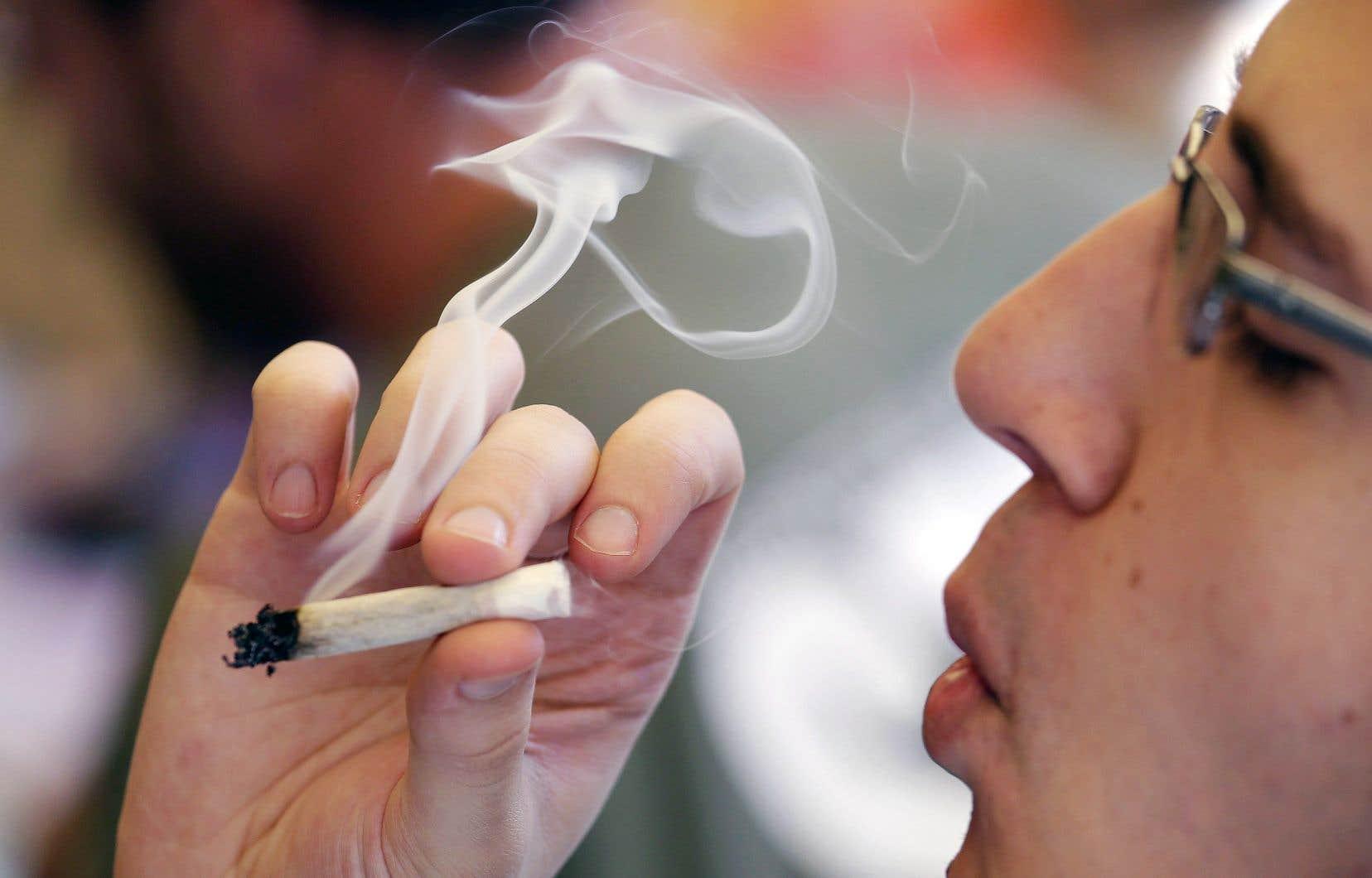Le budget dévoile les grandes lignes de l'entente de principe Québec-Ottawa sur la coordination de la taxation du cannabis.