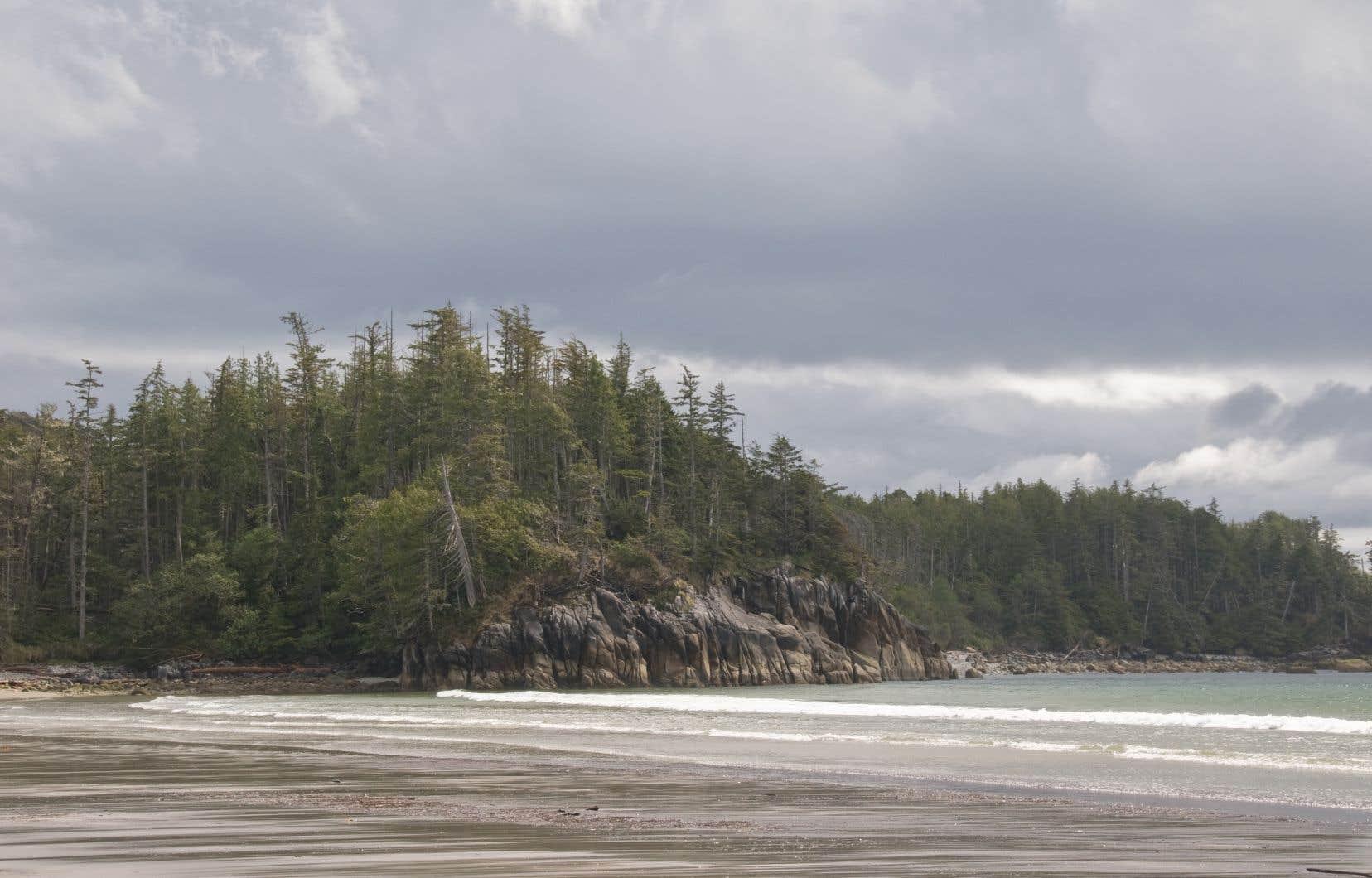 Une plage de l'île Calvert, au nord-est de l'île de Vancouver