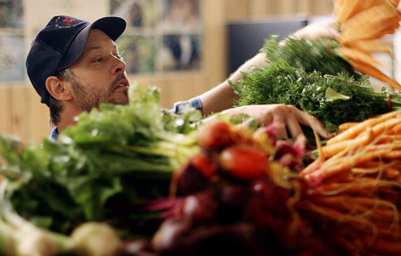 Image tirée de la série documentaire «Les fermiers»