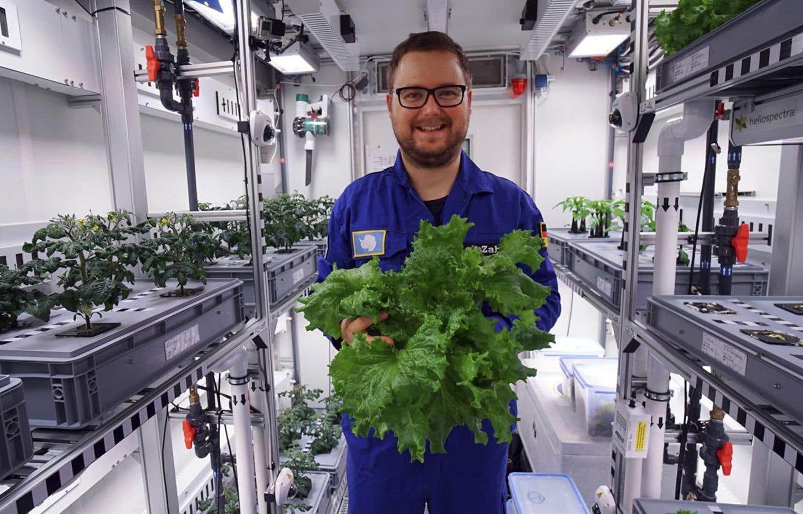 <p>Les chercheurs de la station allemande Neumayer III ont ramassé 3,6 kilos de salades, 18 concombres et 70 radis qui ont poussé à l'intérieur d'une serre sophistiquée pendant qu'il faisait -20°C à l'extérieur.</p>