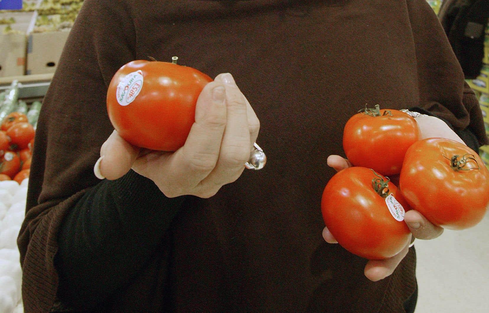 L'entreprise Serres Sagami avait acheté les actifs du producteur de tomates Serres du Saint-Laurent et de sa marque Savoura.