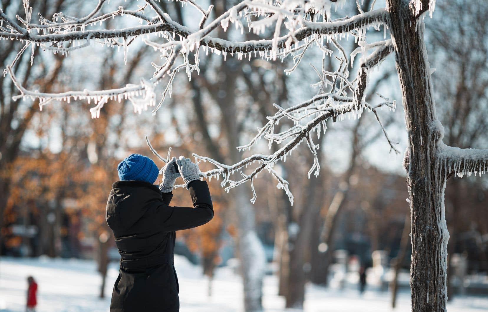 L'intense dépression devrait gagner le Québec dimanche, puis déferler sur le nord et l'est de la province jusqu'à mardi.