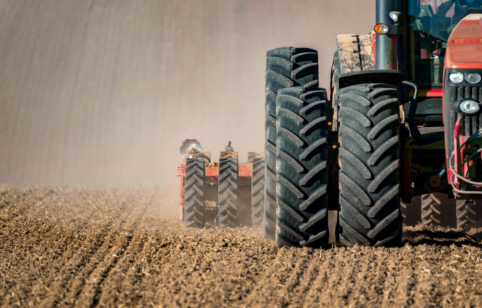 L'analyse du modèle d'affaires de la société conclut qu'«une étude plus approfondie serait nécessaire pour déterminer si Pangea a réellement un effet à la hausse sur la valeur des terres agricoles».