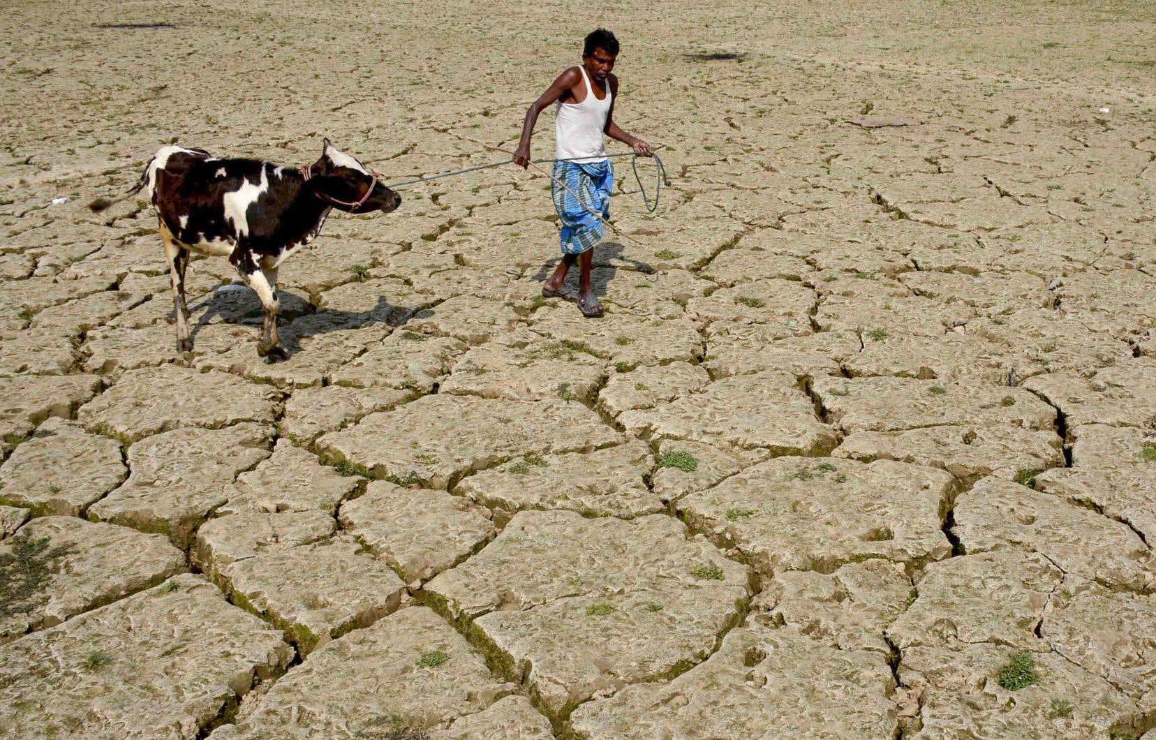 L'Accord de Paris tarde à prendre effet, alors que les conséquences du changement climatique se font déjà sentir.