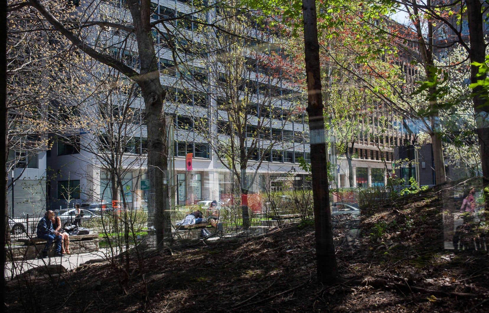 Domtar avait acquis ce terrain de la Ville en 2000 et l'avait converti en espace vert accessible au public deux ans plus tard.
