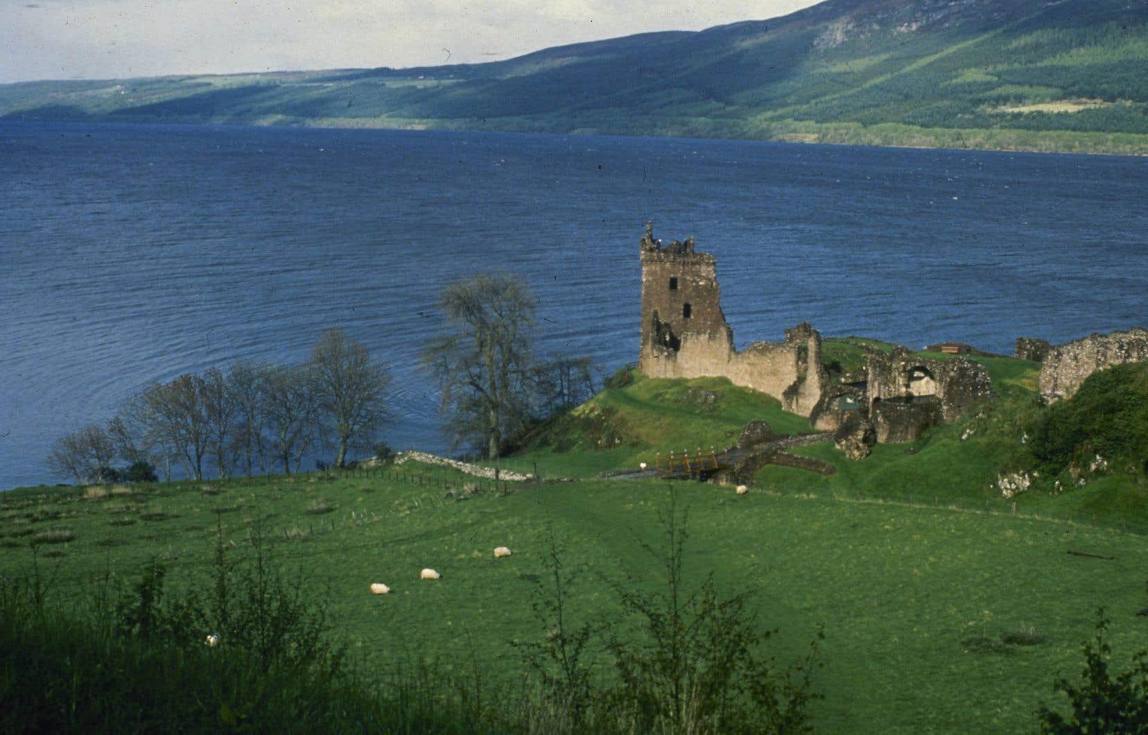 <p>Pendant des centaines d'années, les visiteurs du Loch Ness écossais ont décrit avoir vu un monstre qui, selon certains, se cache dans ses profondeurs.</p>