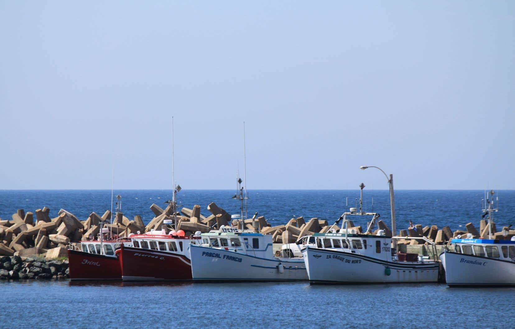 Le projet Old Harry, situé à 80 km des Îles-de-la-Madeleine, suscite des inquiétudes chez les pêcheurs depuis plusieurs années.