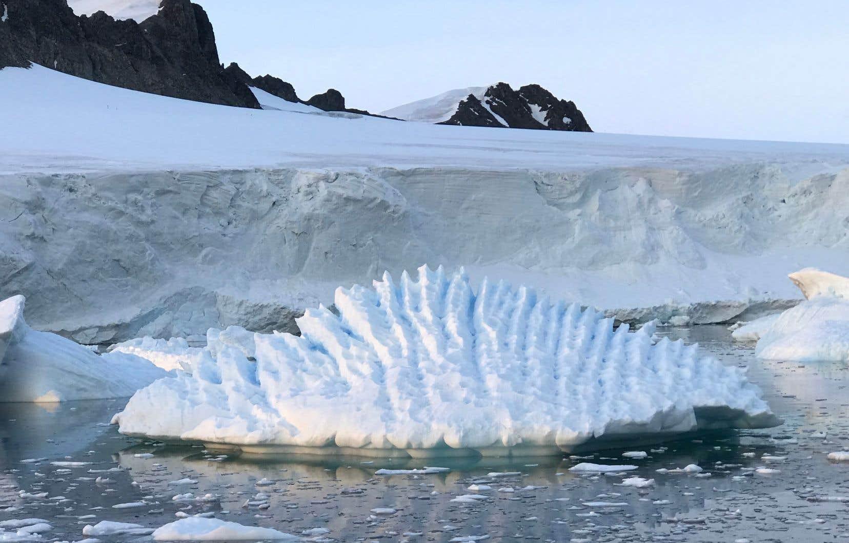 Cette photo montre un iceberg inhabituel près de la station de recherche Rothera sur la péninsule antarctique.