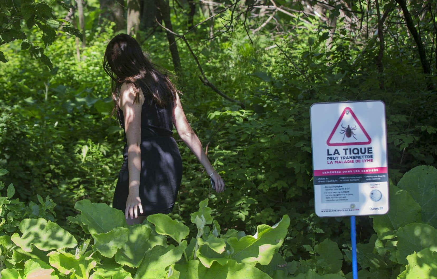 Le tiers des Québécois affectés proviennent désormais de la Montérégie,une des régions où la tique à pattes noires est la plus implantée au Québec.