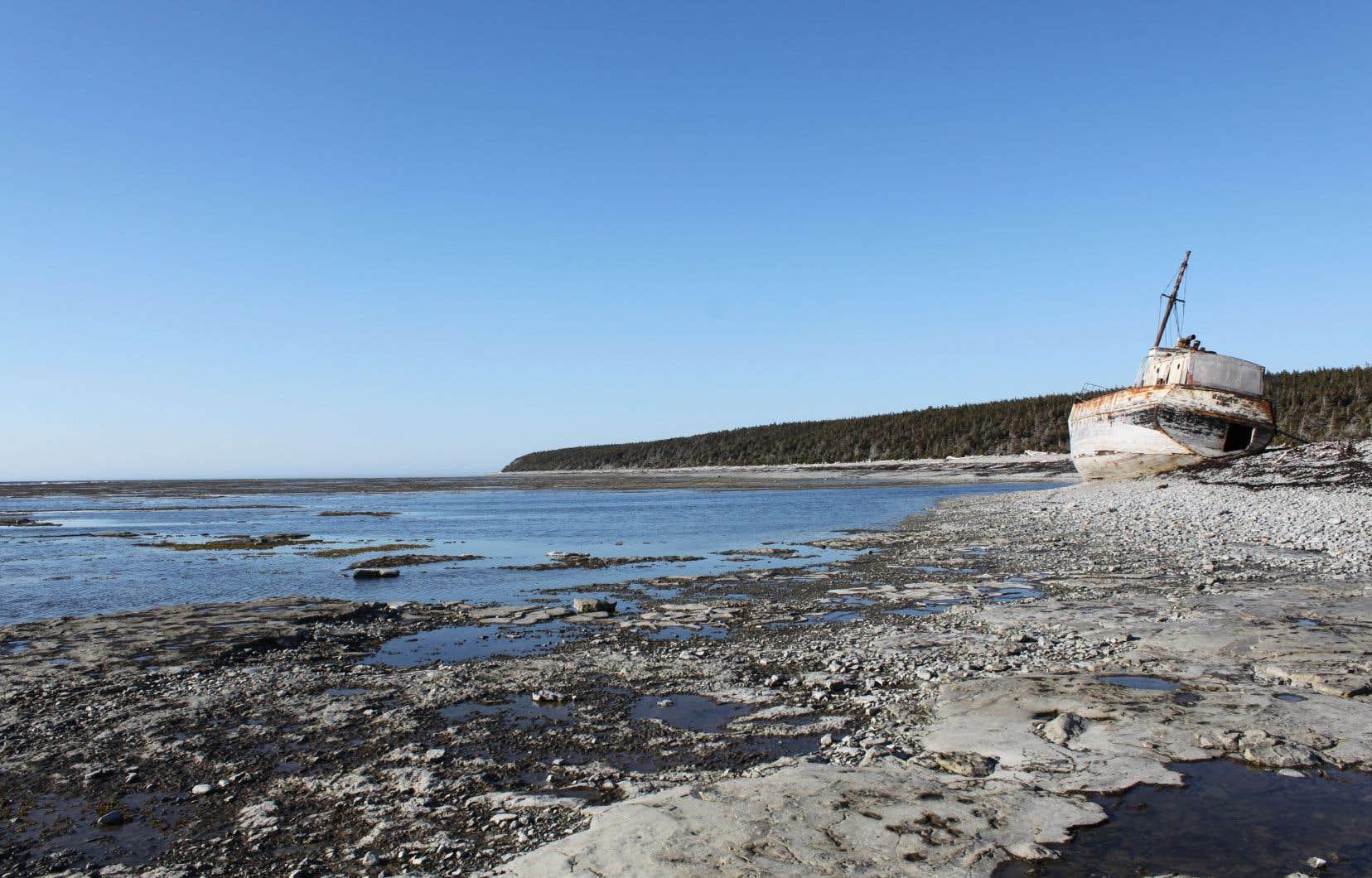 L'histoire de l'île d'Anticosti est parsemée de centaines de naufrages, si bien que les bateaux échoués sur la grève font partie du paysage.