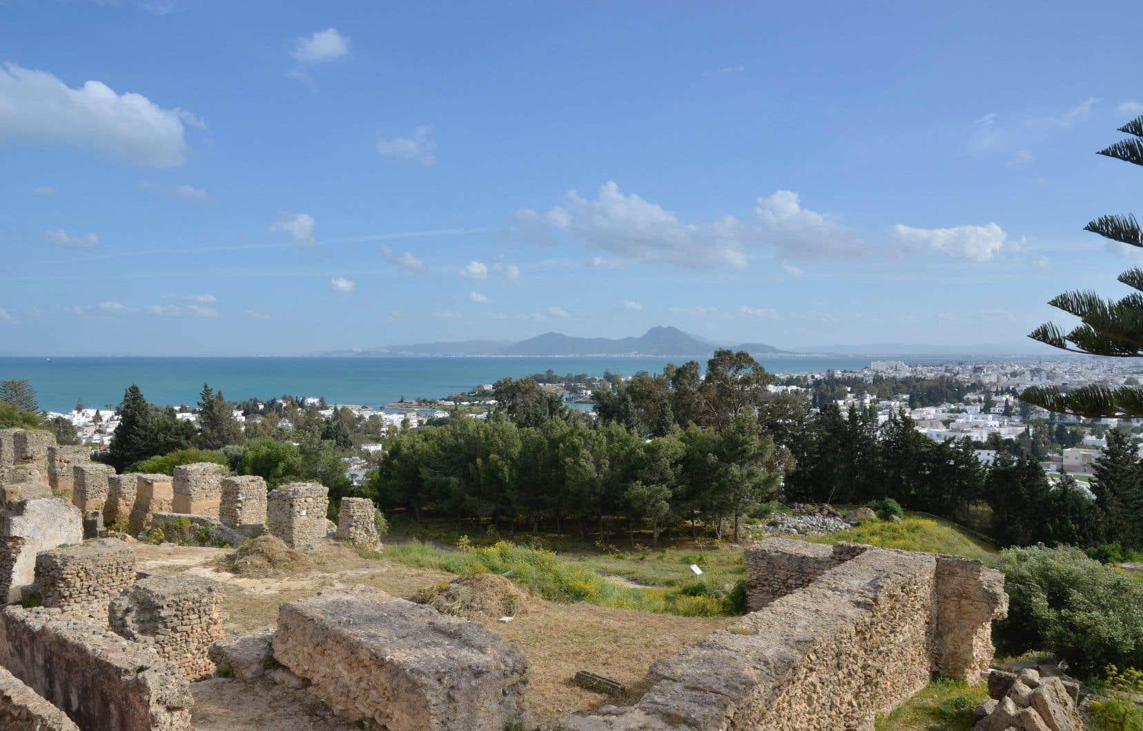 Les olives sont dans l'ADN des Tunisiens depuis la fondation de Carthage.