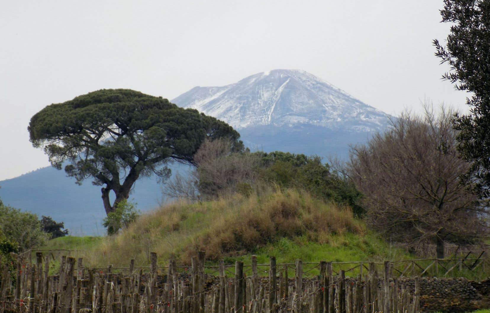 Vue du Vésuve depuis le vignoble de l'antique cité romaine de Pompéi.