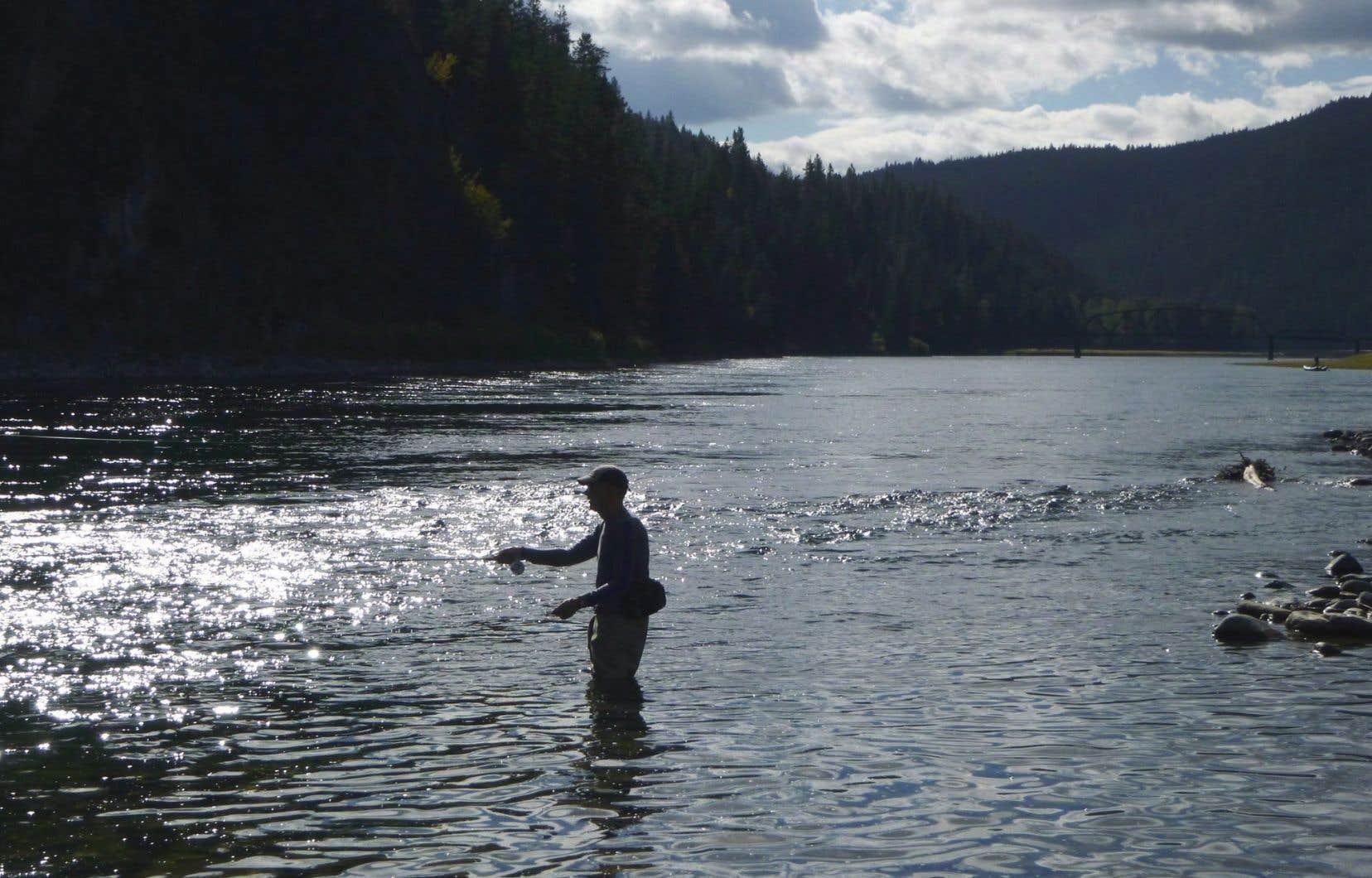 Un pêcheur à la mouche jette sa ligne sur la rivière Kootenai, en aval du réservoir Koocanusa au centre du conflit, près de la frontière entre le Montana et l'Idaho et à Leonia, en Idaho.