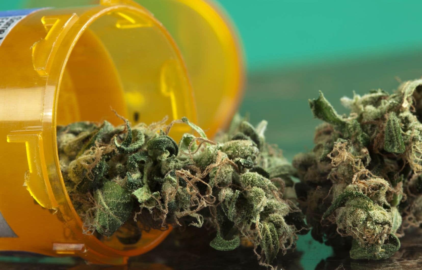 <p>Les chercheurs ont été étonnés de voir qu'autant d'enfants et d'adolescents semblaient consommer de la marijuana pour des raisons médicales.</p>