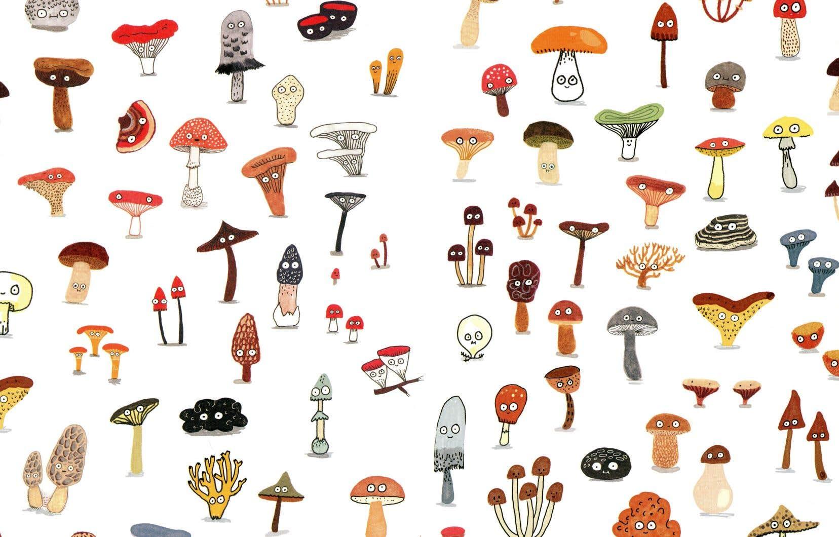 Détail d'une image tirée du livre «Le fan club des champignons»