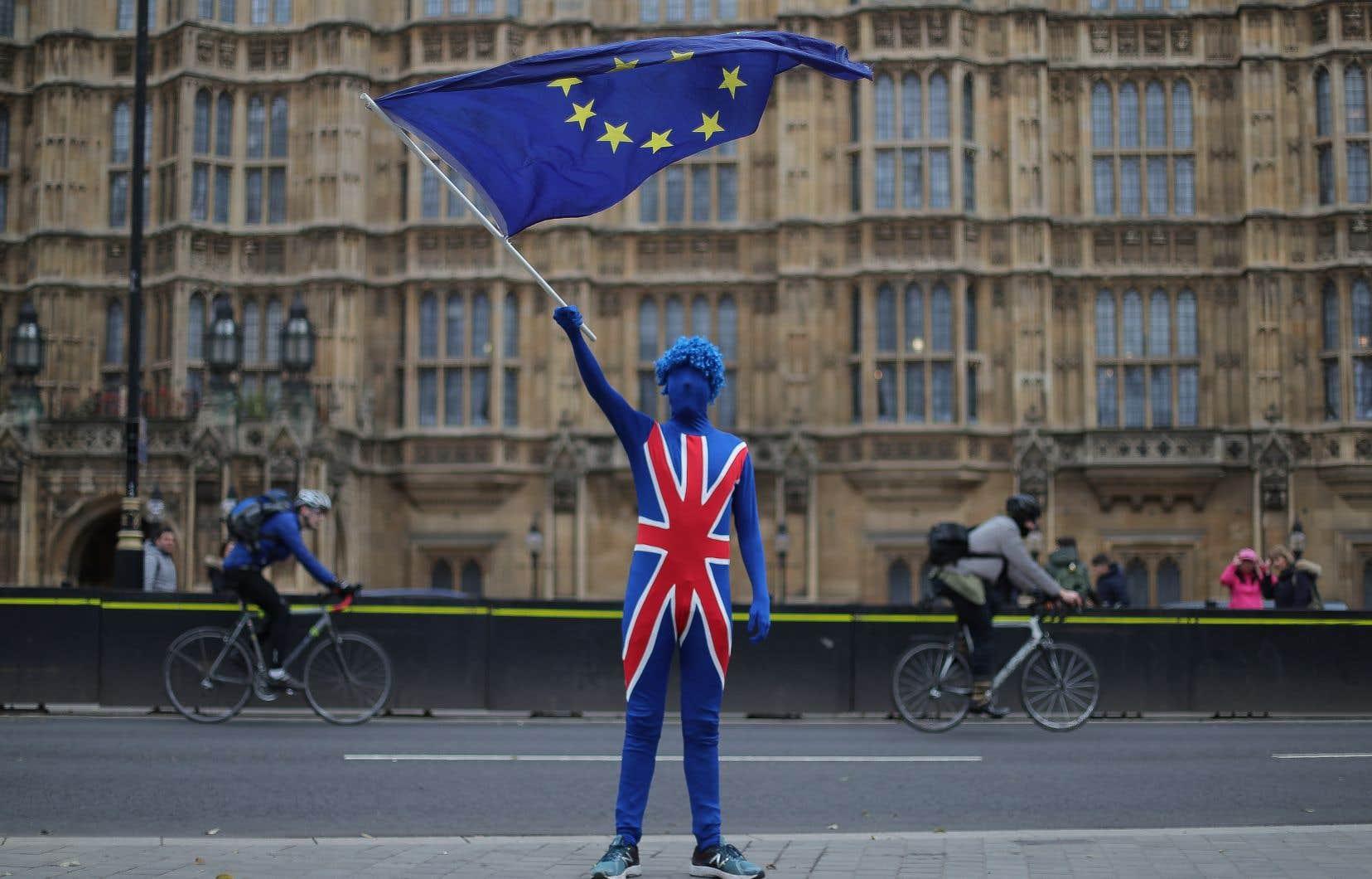 En avril, neuf organisations pro-UE ont lancé une campagne commune pour promouvoir une nouvelle consultation qui, concrètement, proposerait soit d'accepter les orientations de Theresa May, soit de rester dans l'UE.