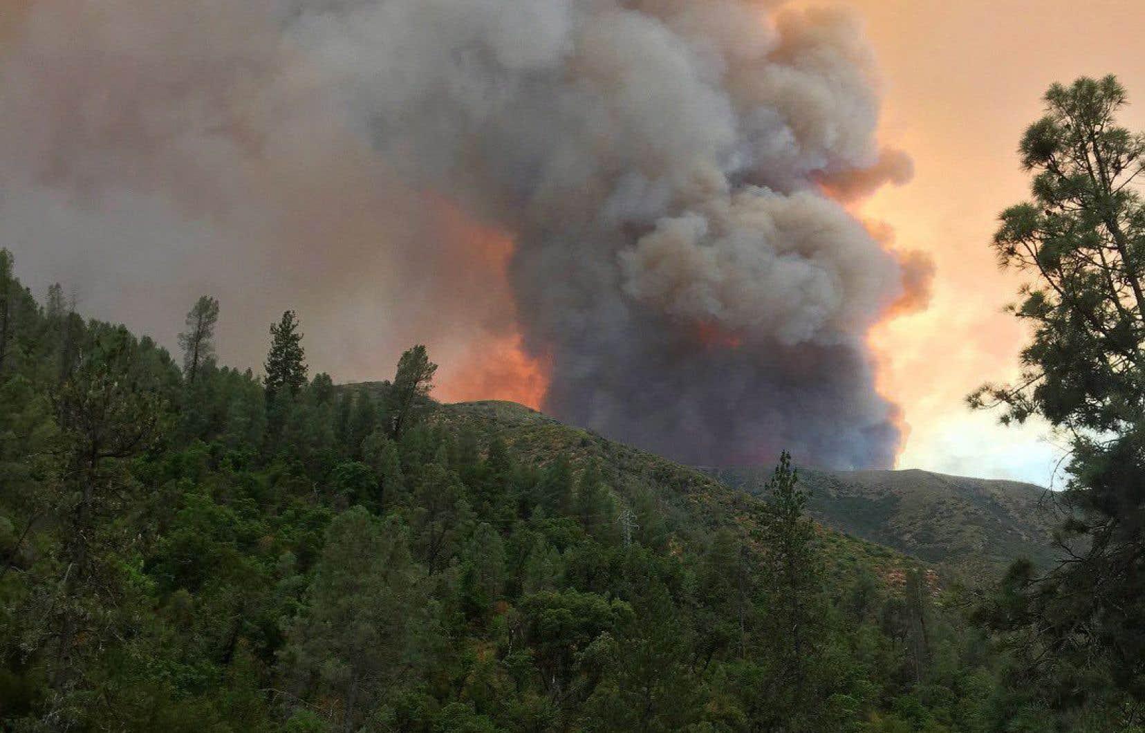 Le feu de Ferguson brûlait à El Portal, non loin du parc national de Yosemite, dimanche.