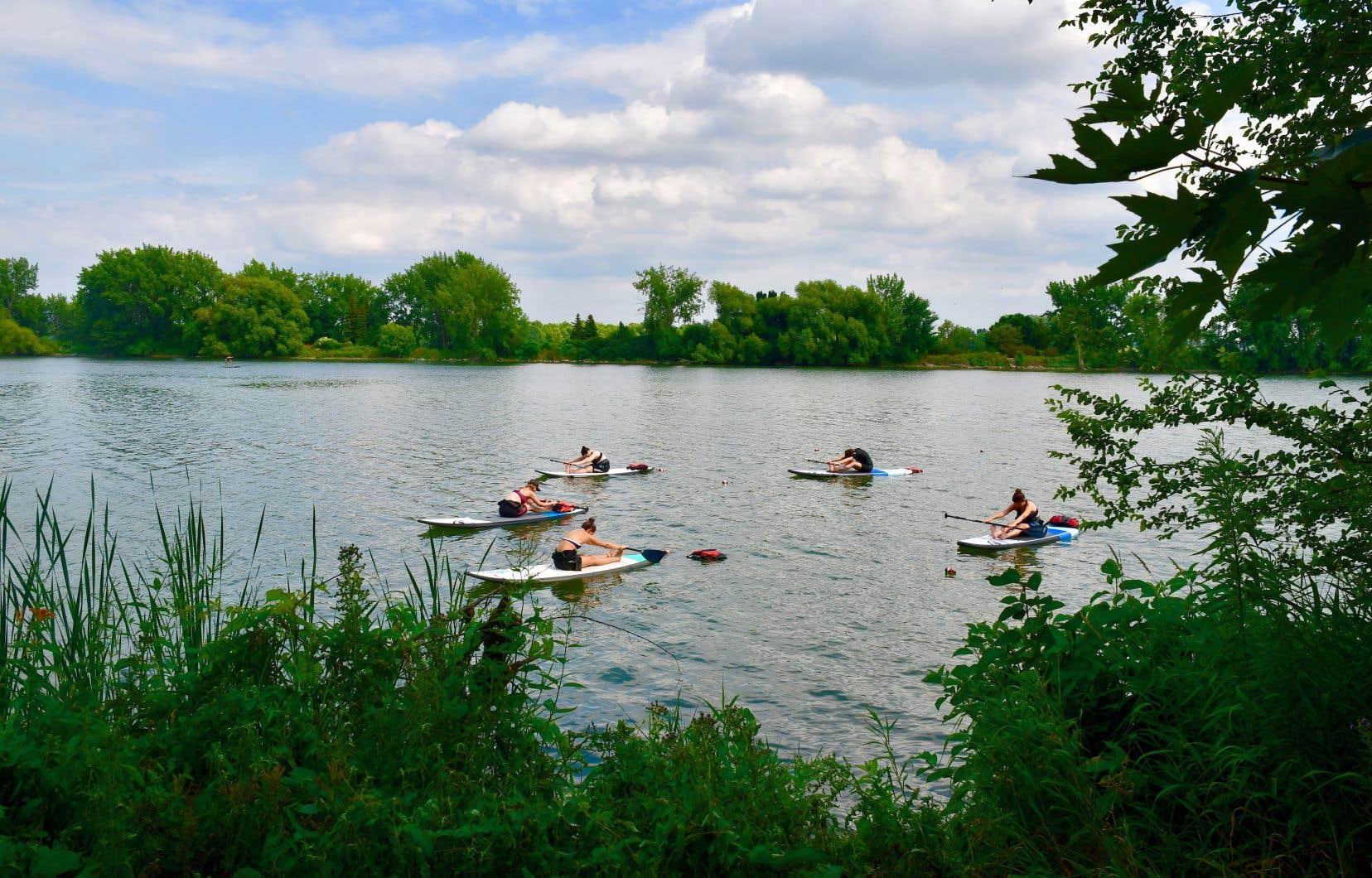 Un cours de SUP yoga dans le bassin face à l'école KSF (Kayak sans frontières) de LaSalle