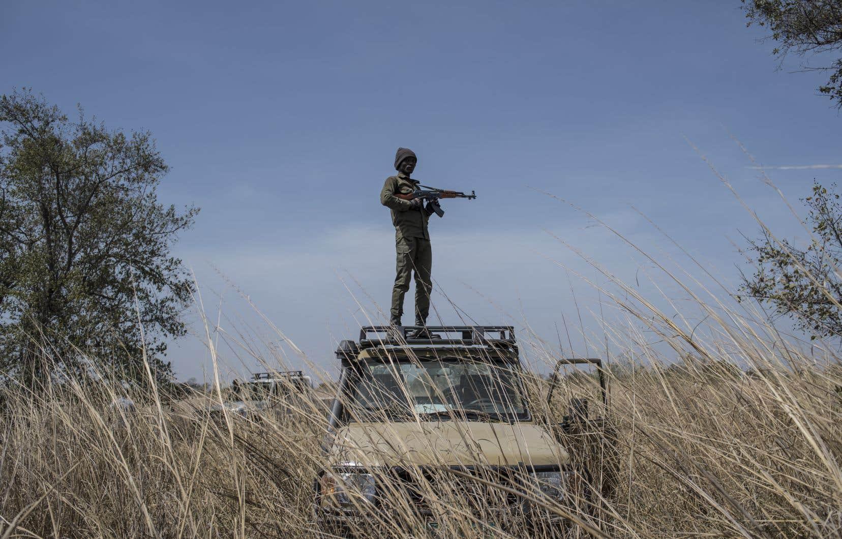 Un garde armé monte la garde au Bénin. Chargés de protéger la faune sauvage, les rangers sont souvent pris pour cible par les braconniers.