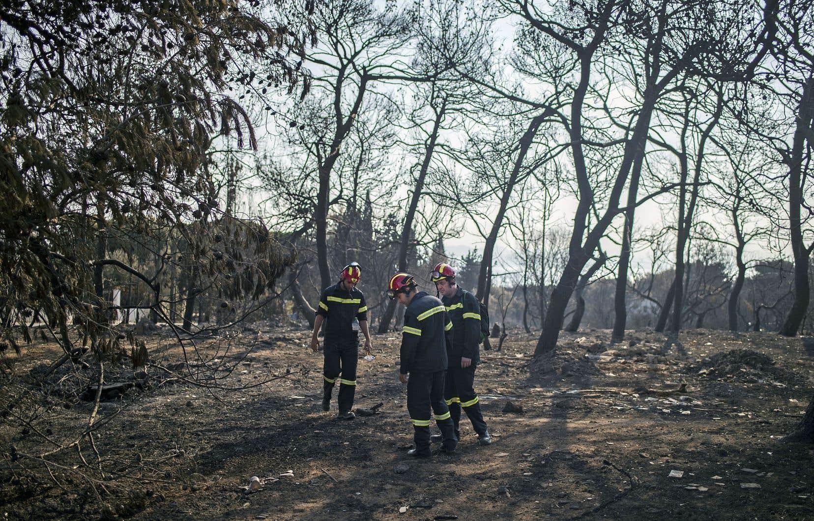 Des secouristes étaient à la recherche de restes de personnes disparues, mercredi, au village de Mati, près d'Athènes.