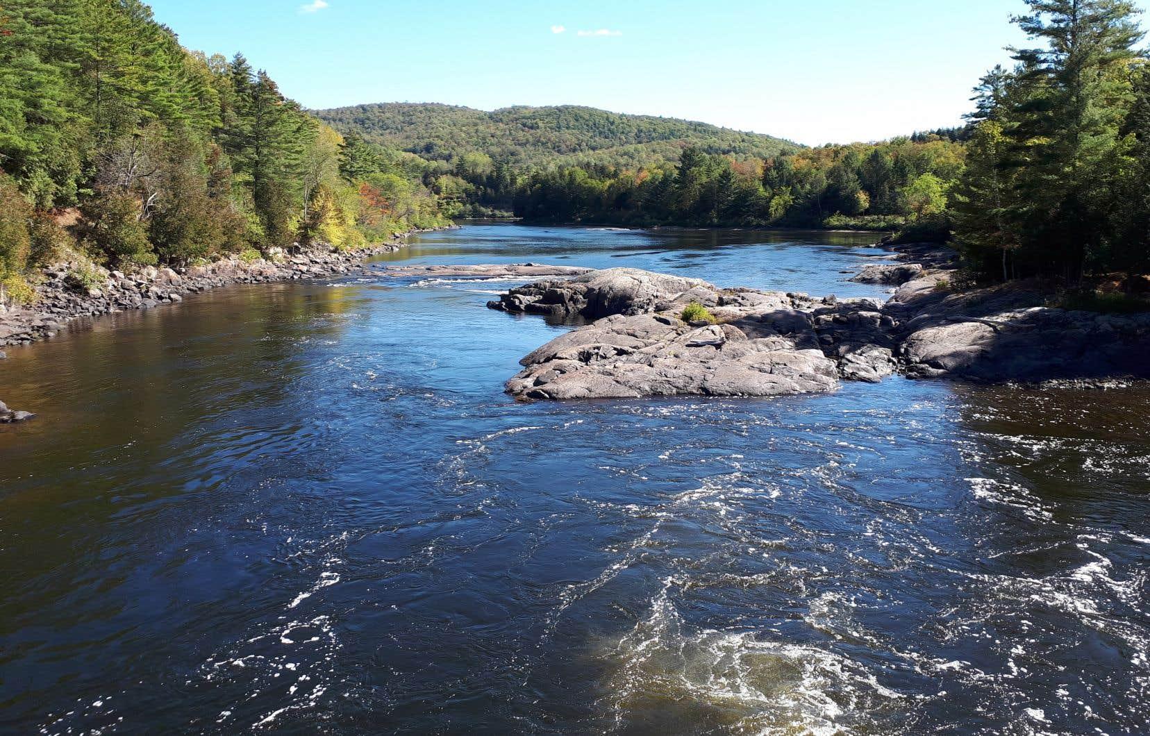 «Si le Québec exportait 10% de son eau douce renouvelable et touchait en redevances 10% du prix actuel de l'eau dessalée, le gouvernement encaisserait 6,5 milliards par année», selon l'auteur.