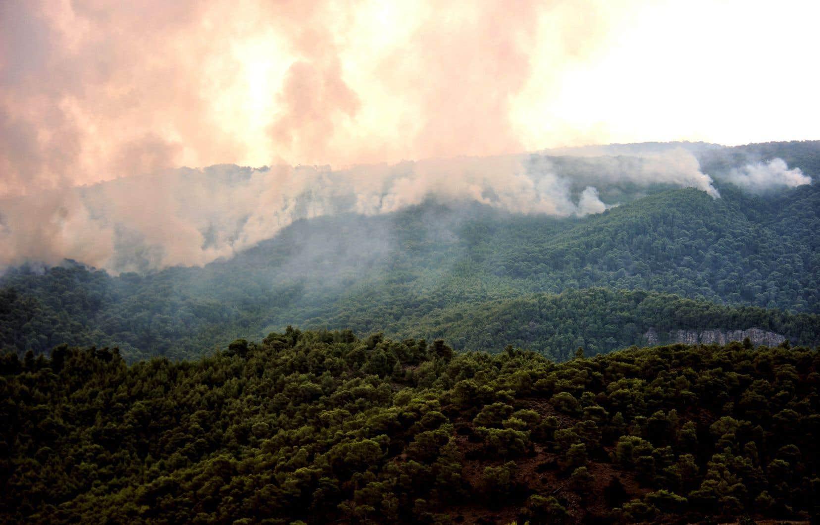 <p>Les flammes ont décimé des zones côtières près d'Athènes, faisant au moins 82 morts et contraignant des milliers d'autres personnes à fuir.</p>