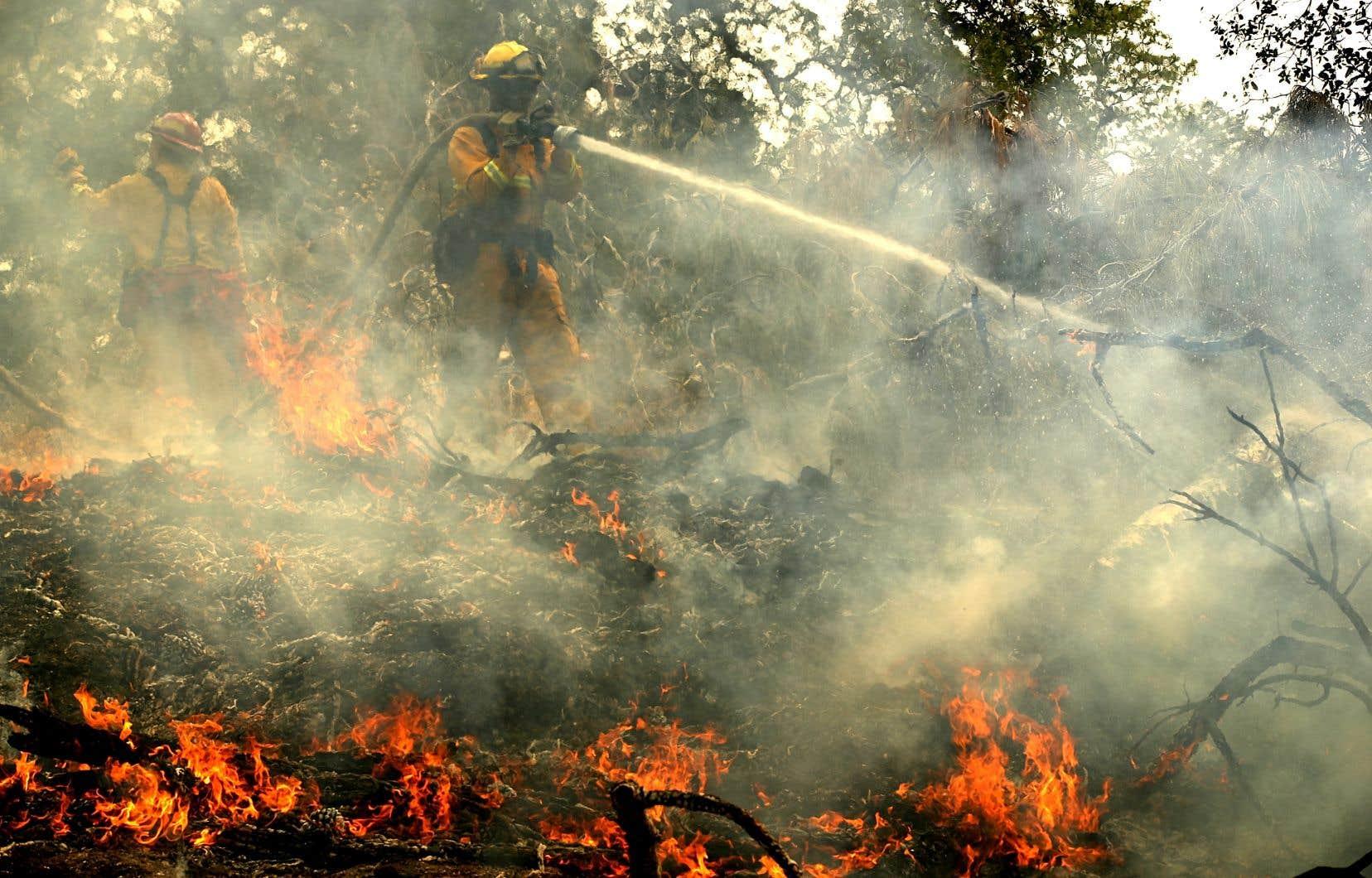 Dimanche soir, l'incendie Carr n'était circonscrit qu'à 17% et s'étendait sur plus de 38 600 hectares, selon des données officielles.