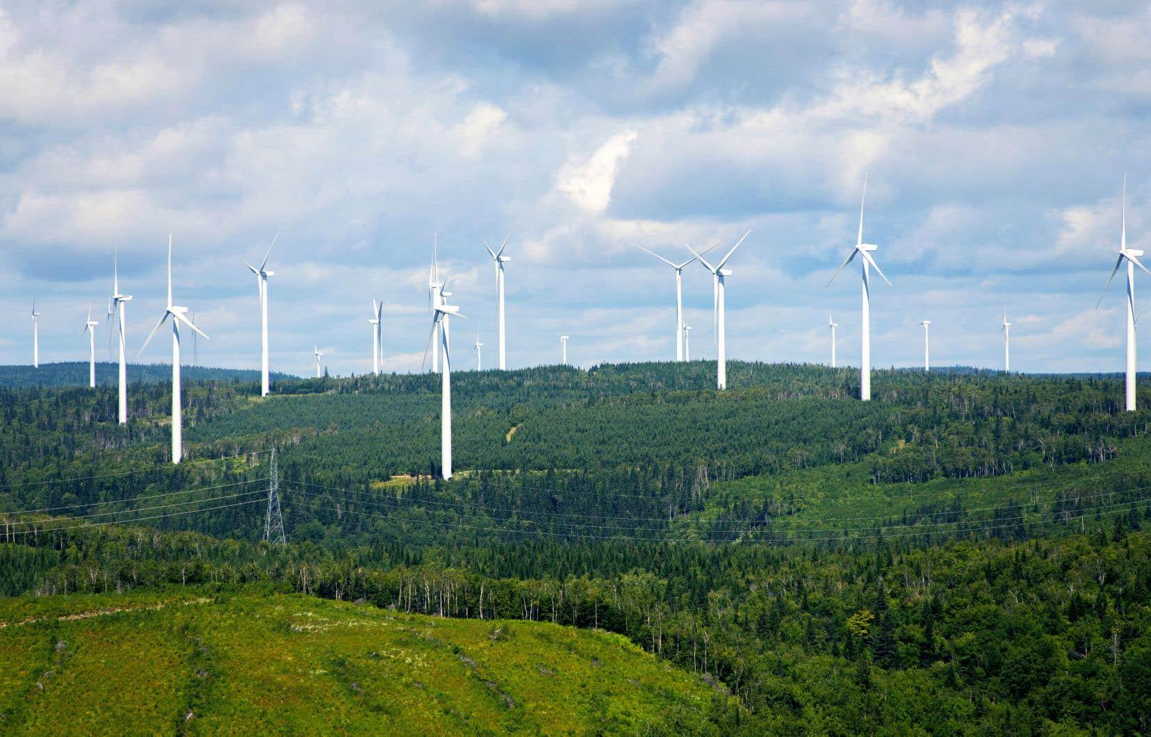 Le parc éolien deCarleton, en Gaspésie