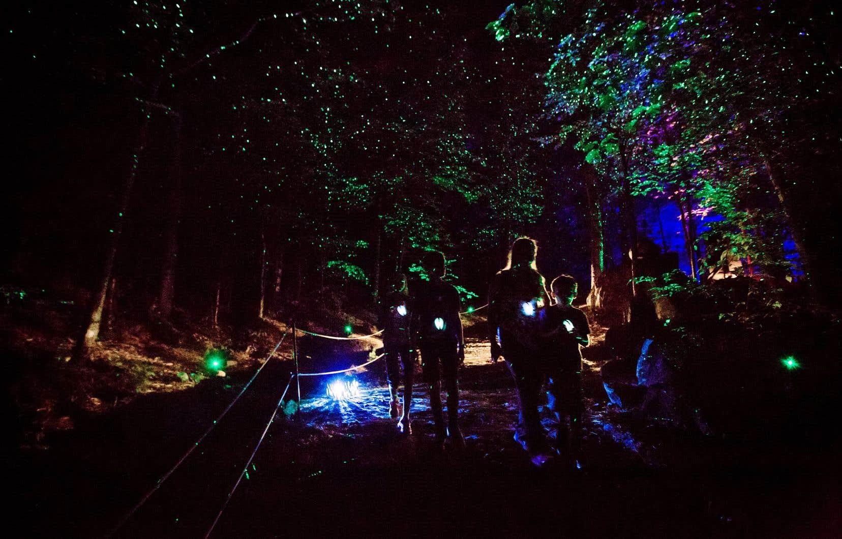 Grâce au travail de Moment Factory, la forêt s'illumine et les arbres étincellent, laissant le visiteur sentir sa petitesse au sein de la nature.