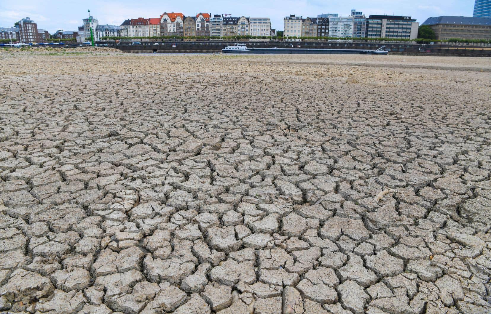 «Les conséquences du changement climatique, alors que l'hémisphère étouffe sous une interminable canicule, ne semblent pas vous inquiéter outre mesure», affirme l'auteur.
