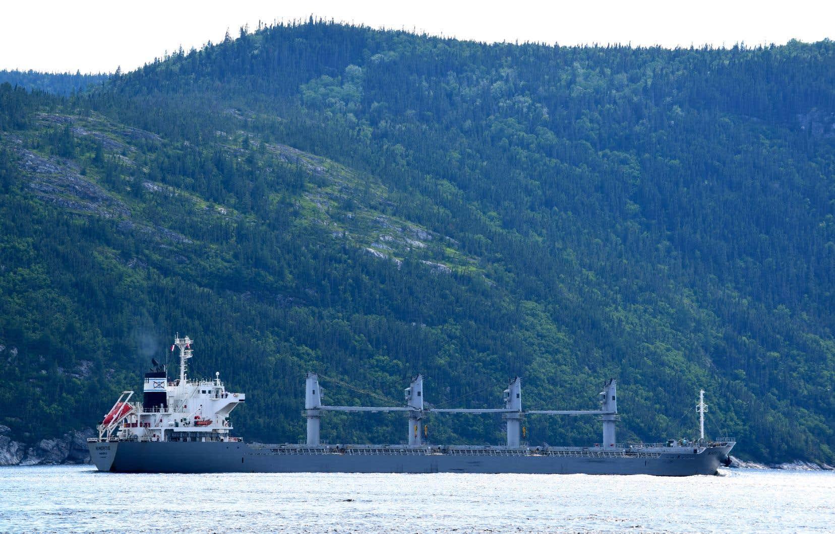 Le projet Arianne Phosphate doit entraîner une hausse importante du transport maritime commercial dans le parc marin du Saguenay–Saint-Laurent.