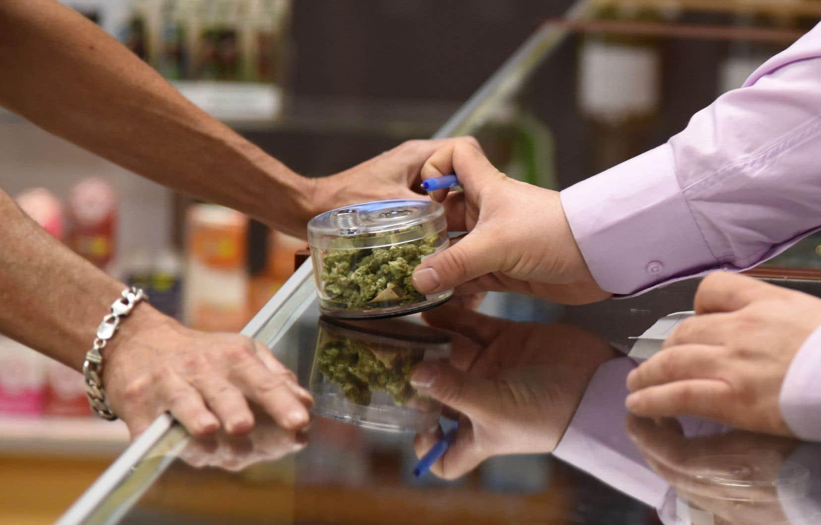 Les perspectives économiques de l'industrie du cannabis, notamment au chapitre de la création d'emplois, s'améliorent à l'approche du 17octobre, date à laquelle les Canadiens seront légalement autorisés à acheter et à consommer de la marijuana à des fins récréatives.