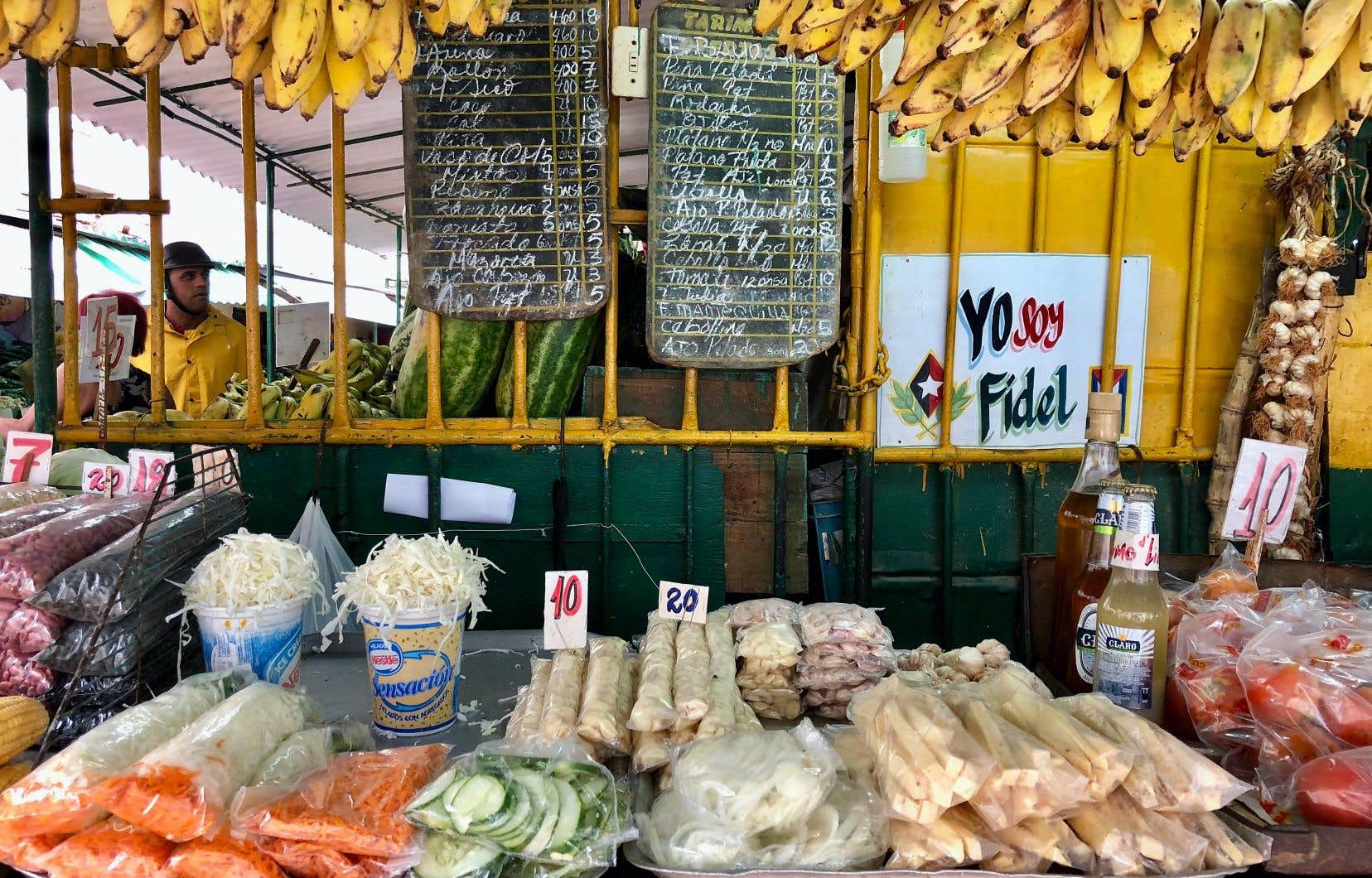Une visite au marché local, ici le Mercado San Rafael, dans Centro, est toujours instructive…