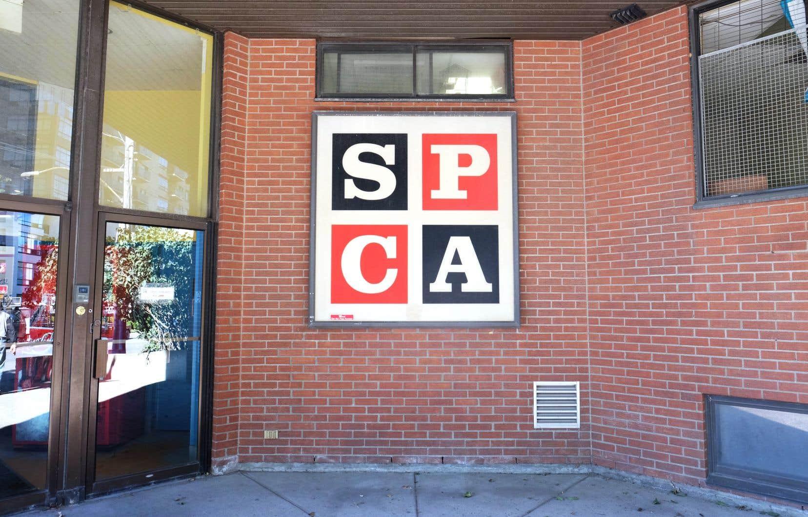 La STM a refusé d'afficher AniMAL, première campagne publicitaire menée par la SPCA.