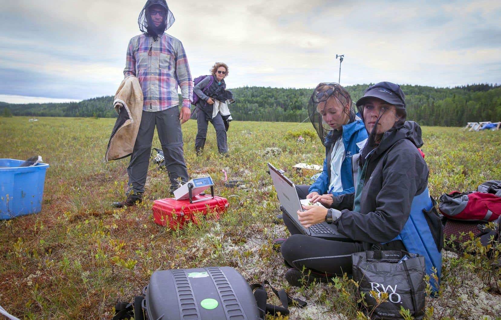 À l'aide de divers instruments, Pierre Taillardat, Camille Girard et Léonie Perrier mesurent la «respiration» de la tourbière. Michelle Garneau, la professeure responsable du projet de recherche, vient à leur rencontre.