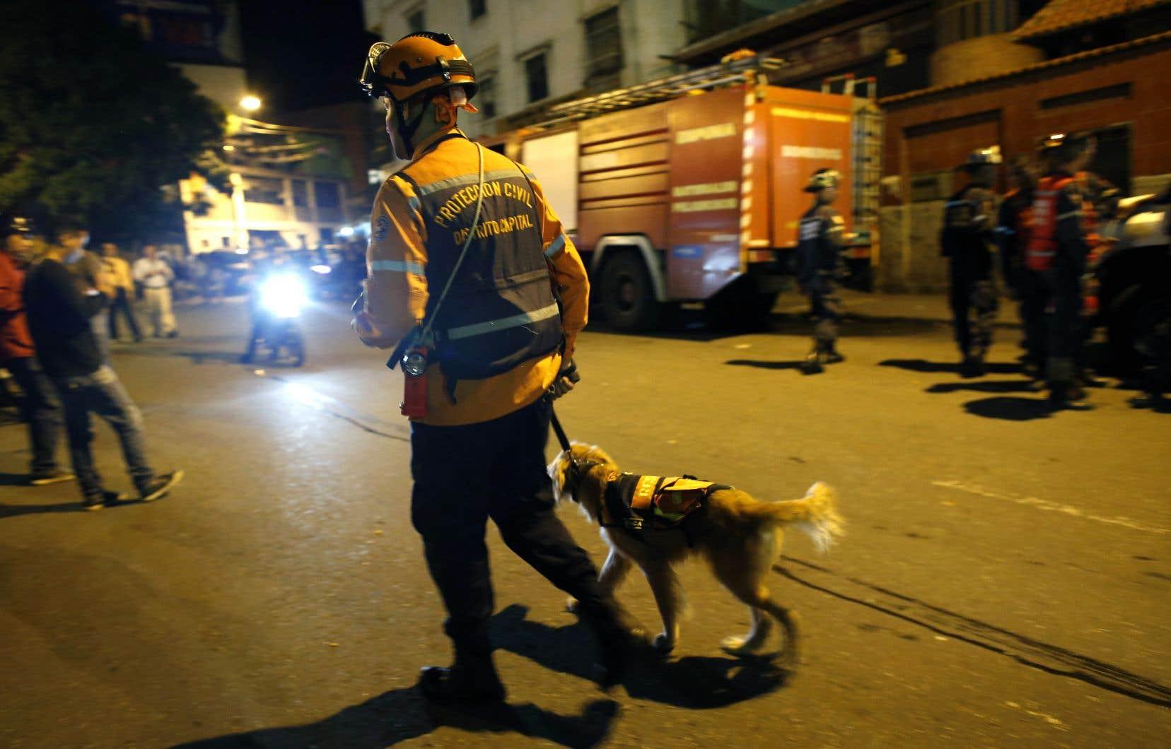 Un travailleur de la protection civile et son chien de recherche patrouillent dans la capitale, Caracas, après un violent séisme.