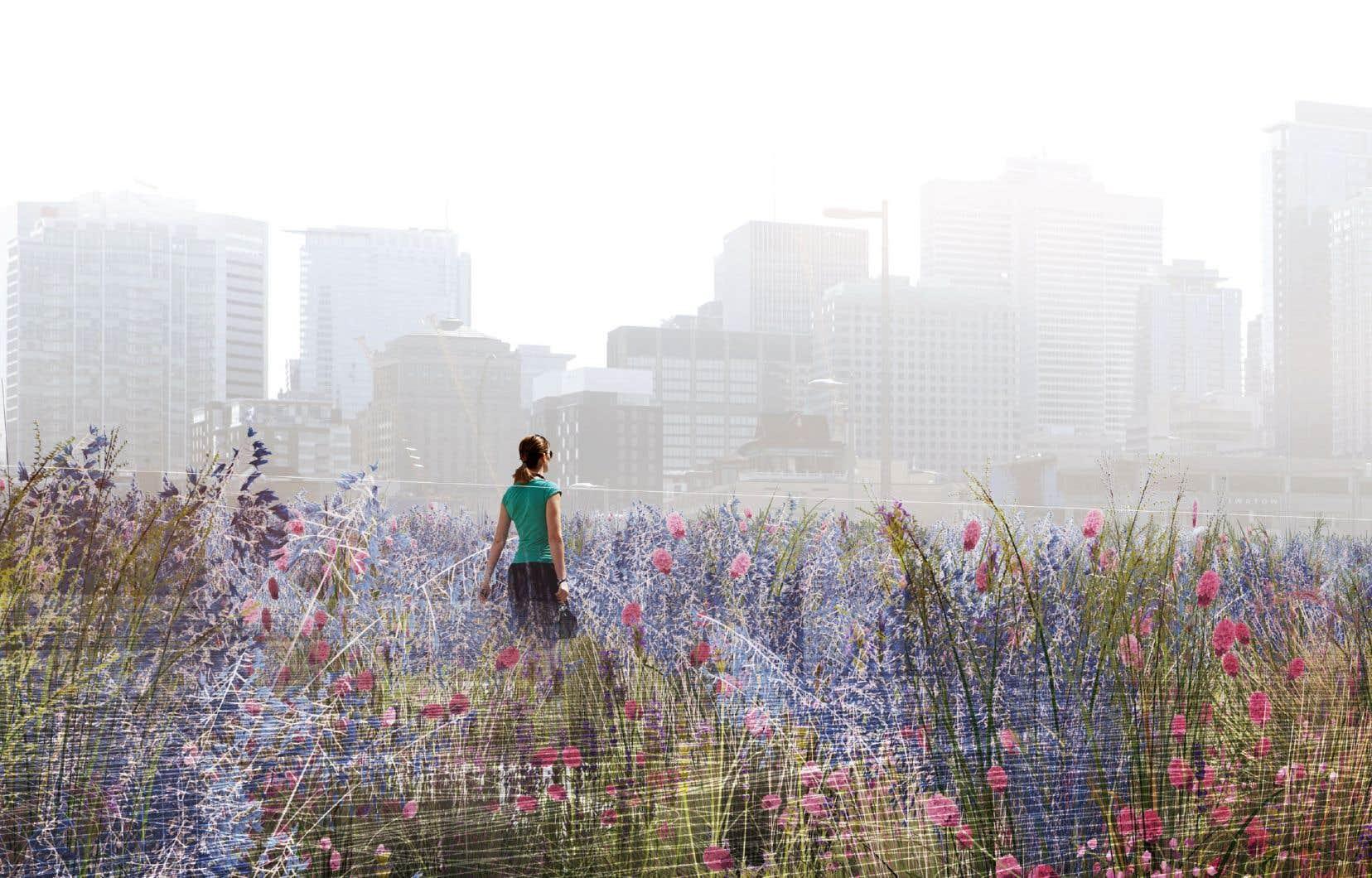 L'hommage prendra la forme d'une dalle inclinée qui sera couverte de 21 espèces de plantes et de fleurs, une proposition de la firme Lemay, de SNC-Lavalin et de l'artiste Angela Silver.