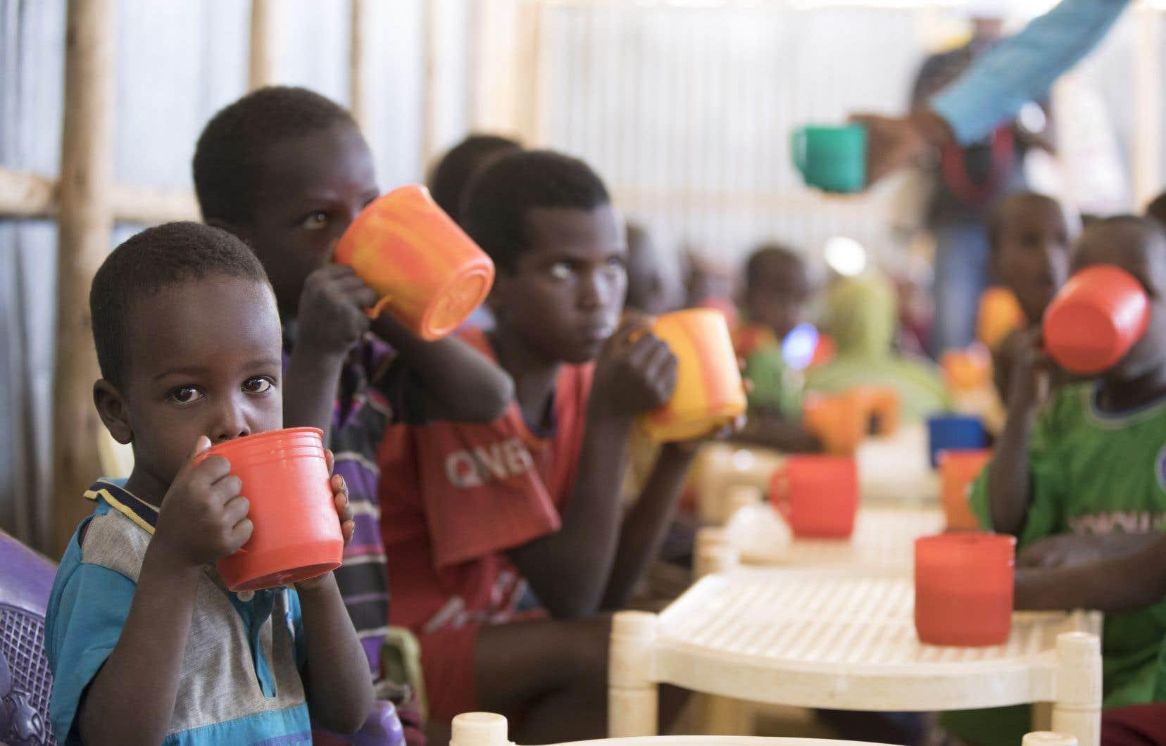 L'Afrique est le continent le plus touché, avec près de 21% de sa population en état de sous-alimentation.