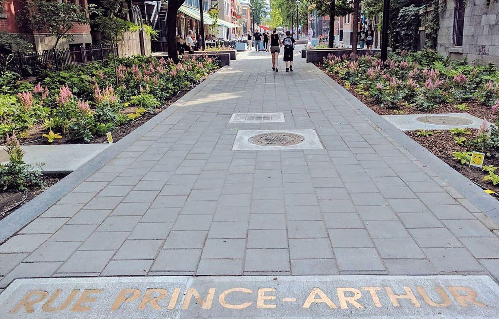 Selon les artistes concernés par la rue Prince-Arthur, la tenue du premier concours et son annulation ont été empreintes d'anomalies et de mystère.