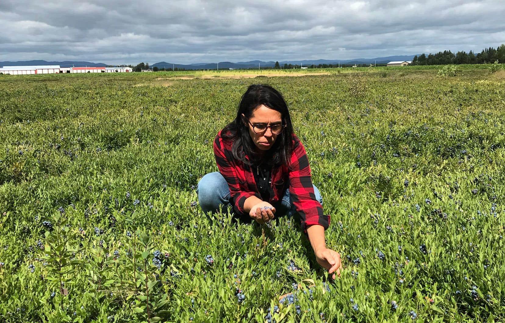 Nathalie Rivard, fille de Michel Rivard, cueilleuse de bleuets sauvages depuis 1980