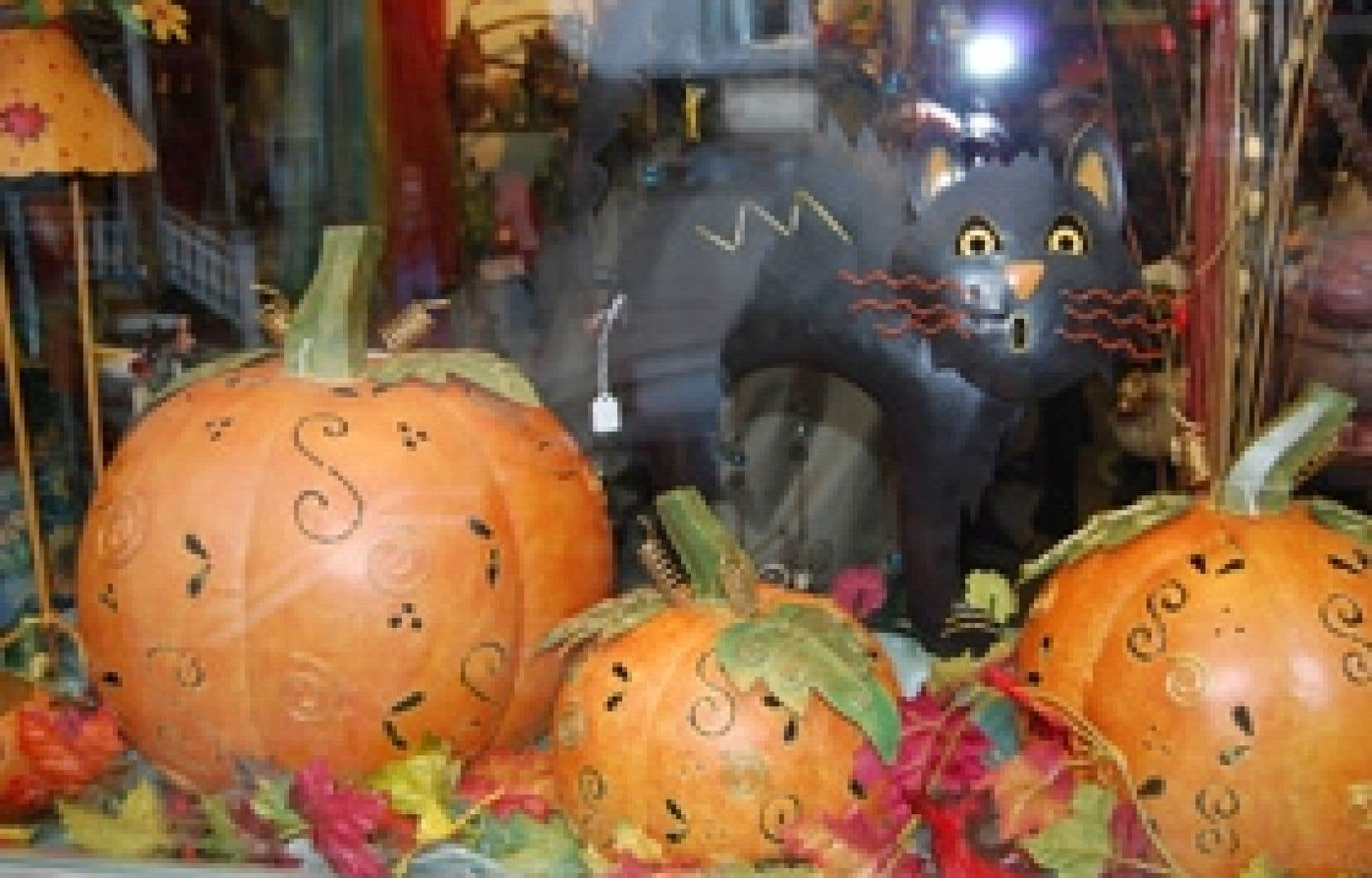 Voici des cucurbitacées de drôles de formes et de couleurs, qui se mélangent parfois pour former un déguisement d'Halloween.