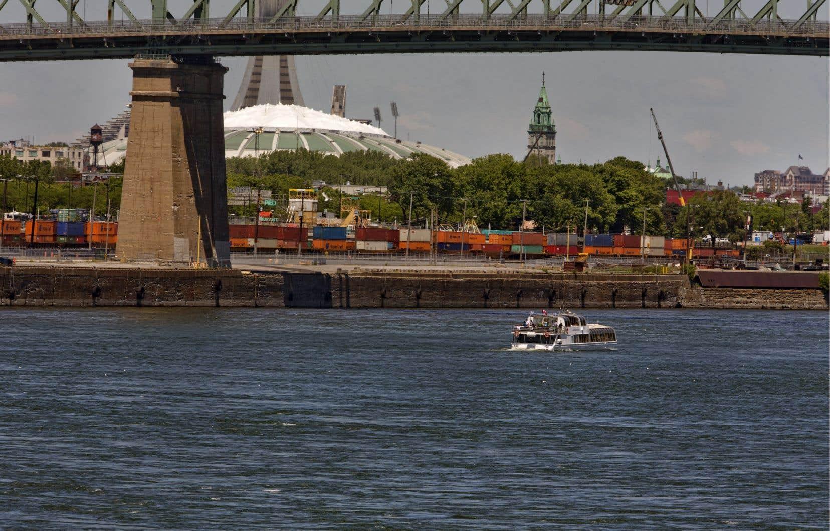 Le fleuve Saint-Laurent serait l'un des cours d'eau où l'oxygène se raréfie le plus rapidement, d'après M.Montpetit,directeur de la conservation chez Ciel et Terre.