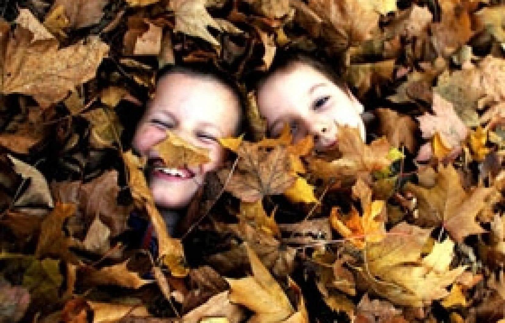 Selon une hypothèse d'un chercheur de l'Université du Missouri, c'est un mécanisme génétique qui déclencherait la perte des feuilles des arbres à l'automne.