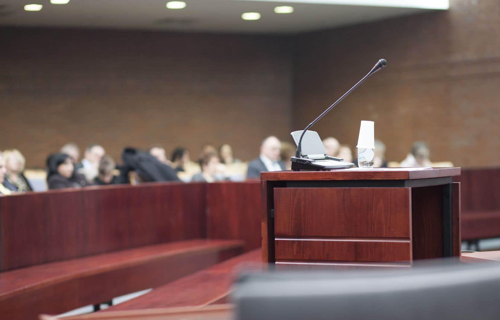 «Les services juridiques sont financièrement inaccessibles pour une partie importante de la population, ce qui explique que, d'après le ministère de la Justice du Québec, 38% des justiciables s'autoreprésentaient en matière familiale en 2014-2015». expliquent les auteures.