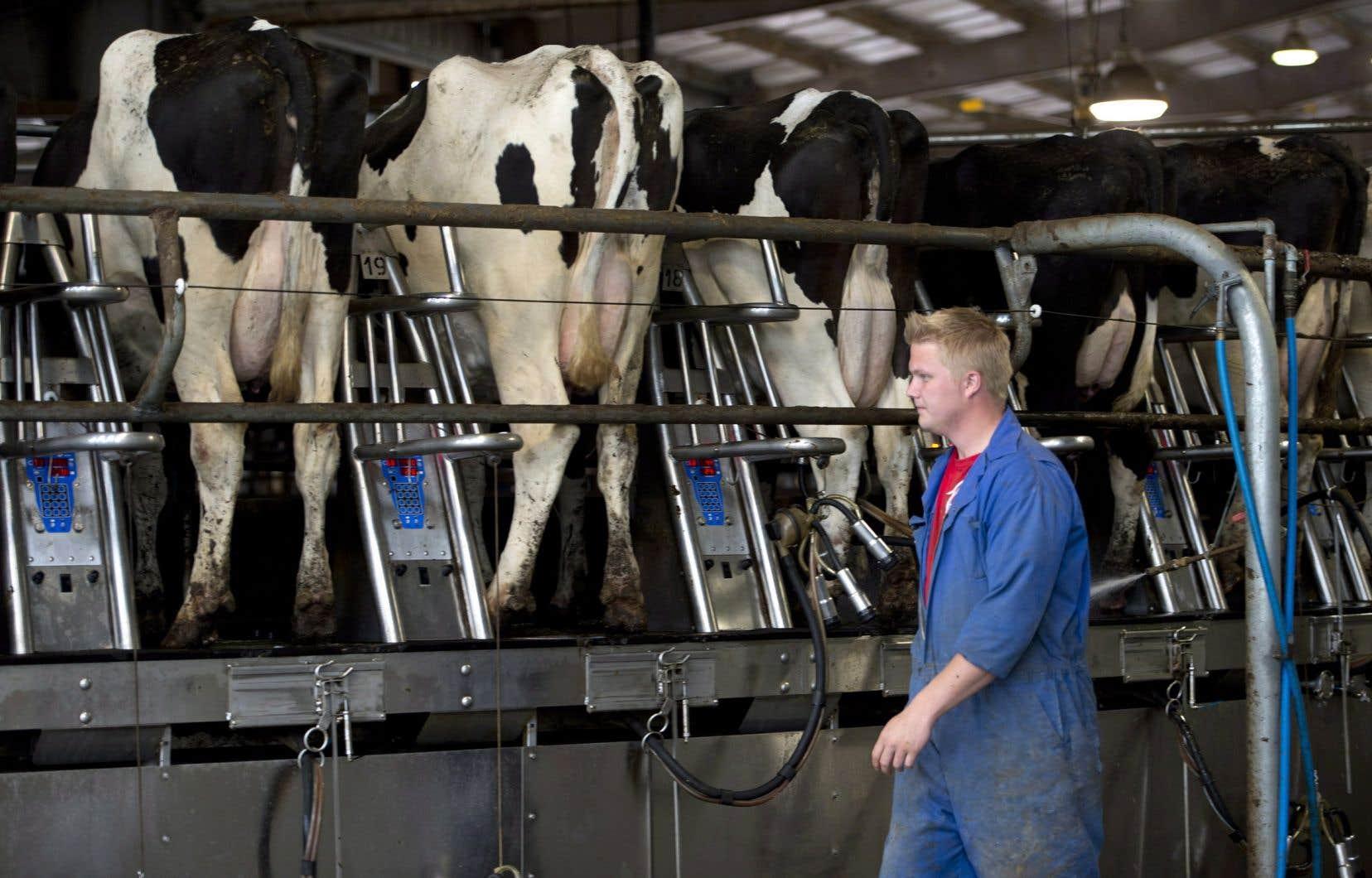 Le Québec compte environ 5500 fermes laitières, qui génèrent des revenus de 2,45milliards par année.